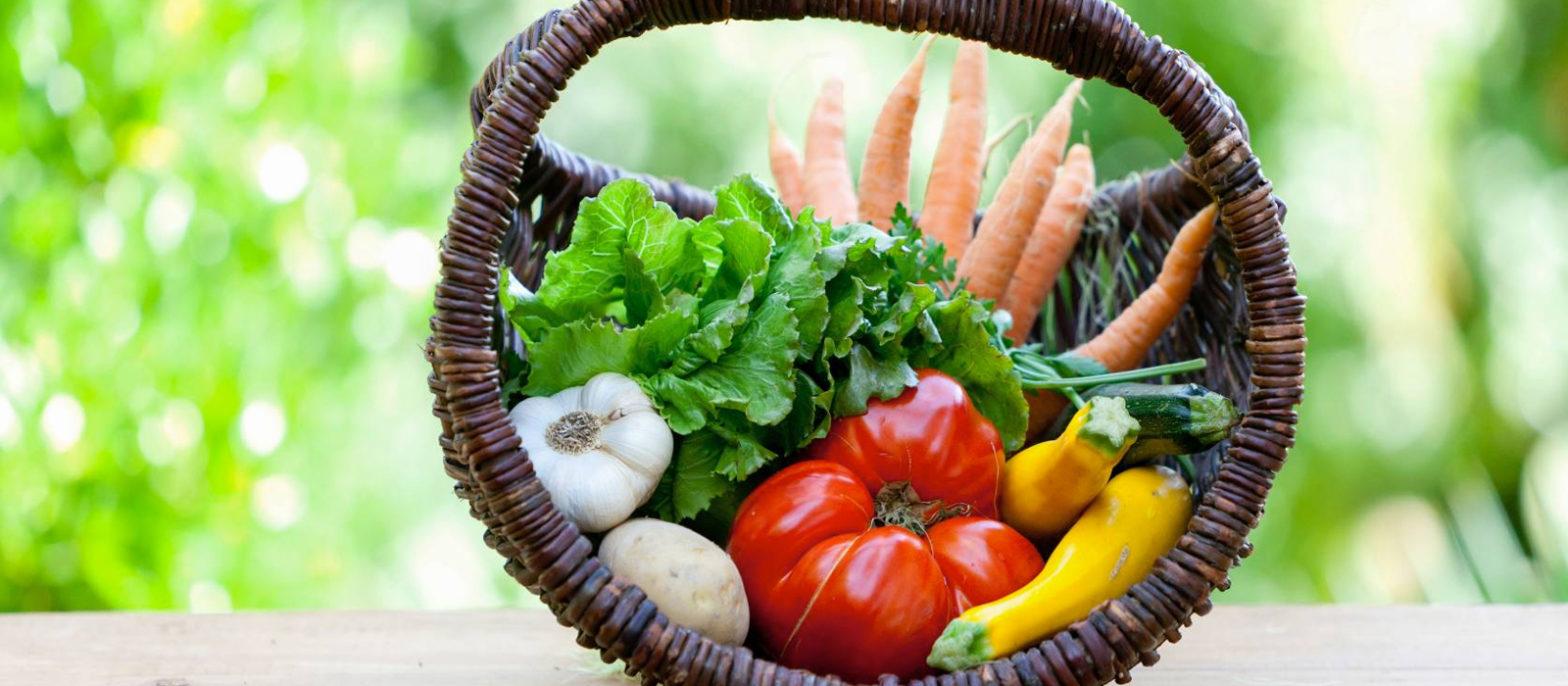 Zoom sur le Programme national nutrition santé